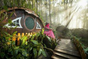 wisata hutan di jogja
