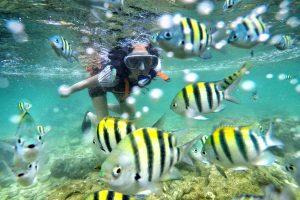 snorkeling yogyakarta